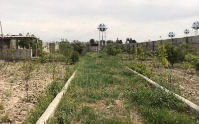 فروش باغ با مجوز جهاد ۱۵۰۰ متری با سند شش دانگ در ملارد