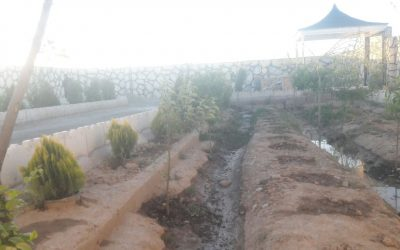 خرید باغچه ۵۶۰ متری با سند تک برگ در شهریار